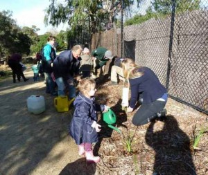 Natured Kids Planting