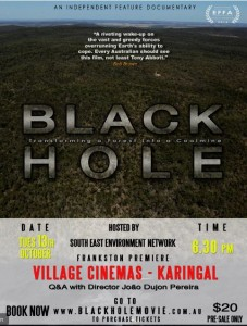 Black Hole Flyer